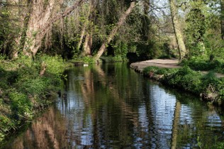 River Wandle in Earlsfield